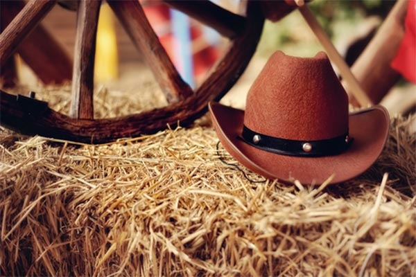 Calgary Stampede Event Catering